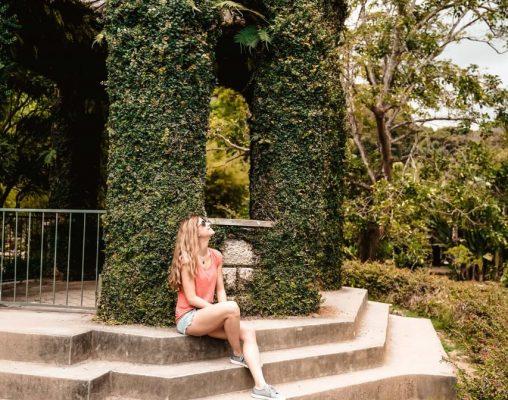 Botanischer Garten Sehenswürdigkeit Rio de Janeiro