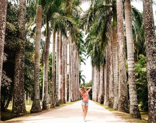 Botanischer Garten Rio de Janeiro Sehenswürdigkeiten