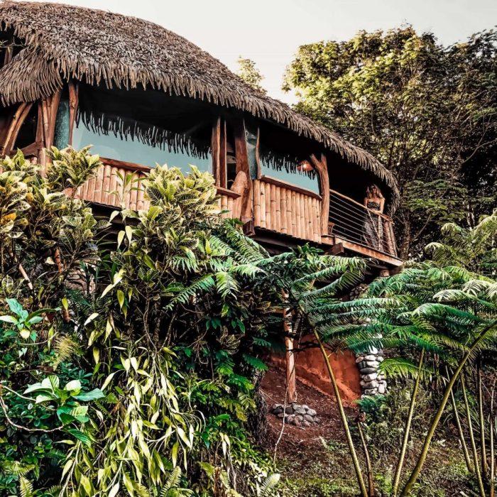 footprintstohappiness-baumhaus-tahiti