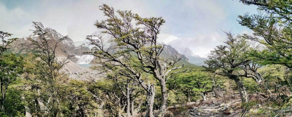 fitz roy el chalten Wandern in Patagonien Landschaft