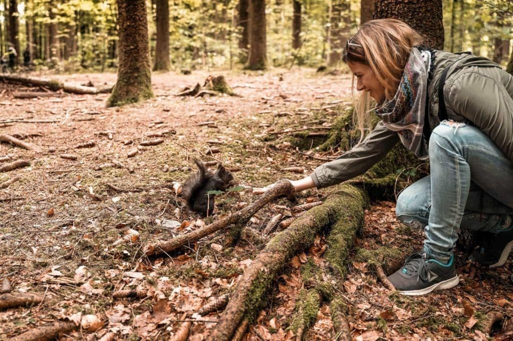 Ausflugstipps Eichhörnchenwald Fischen im Allgäu