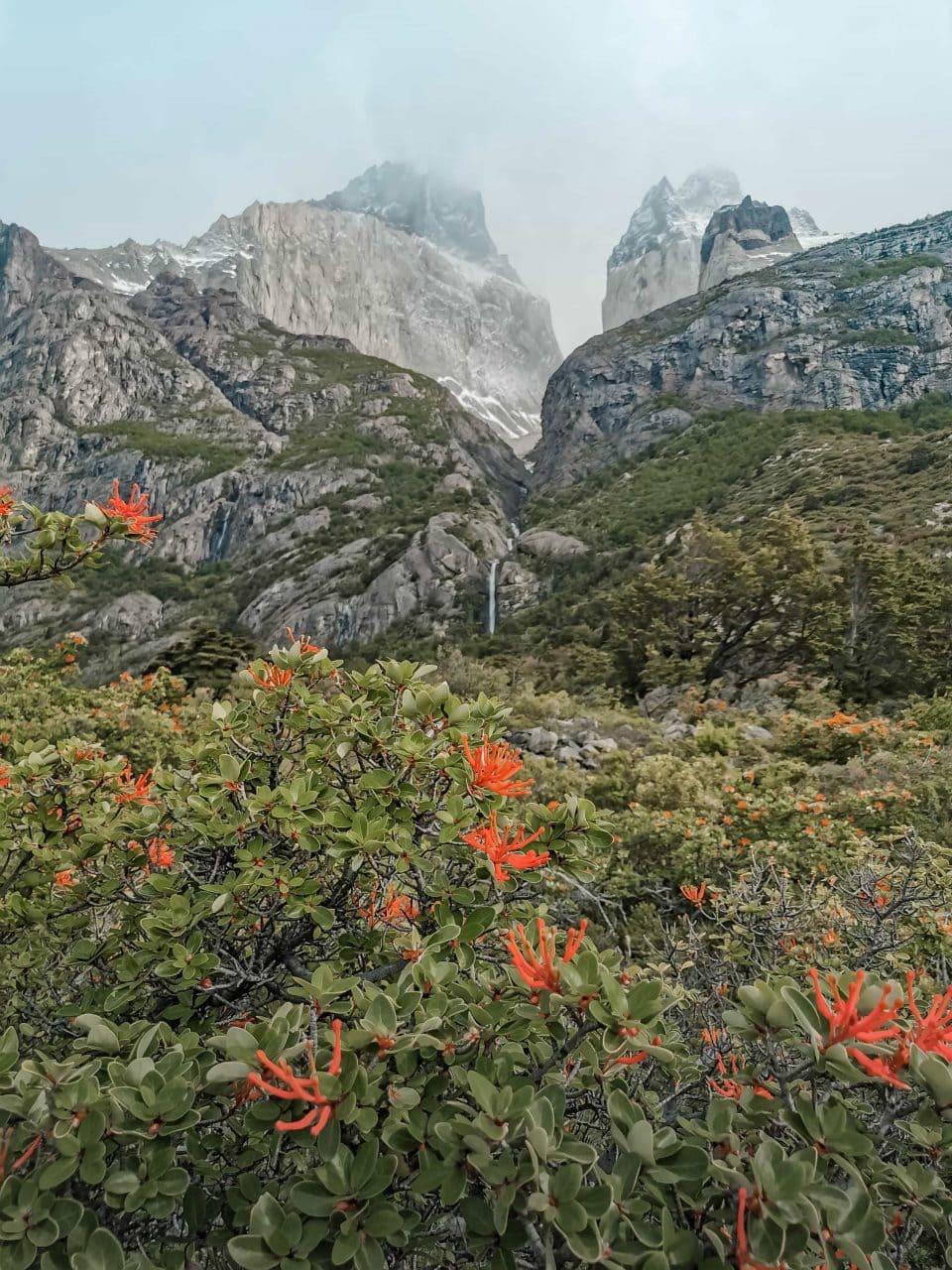Berglandschaft Patagonien Torres del Paine Campingplatz Cuernos