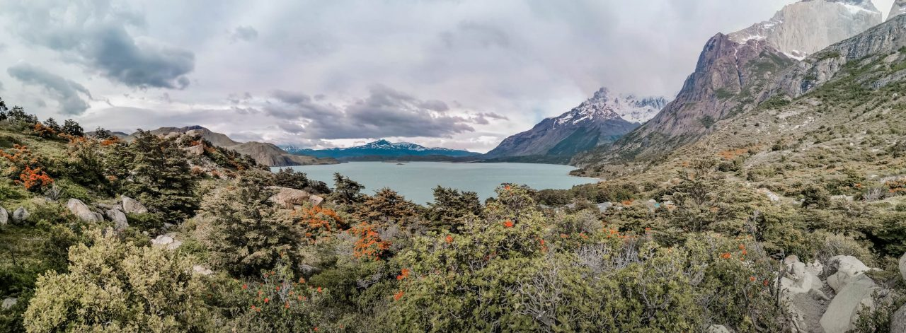 Landschaft Torres del Paine Nationalpark Patagonien Chile