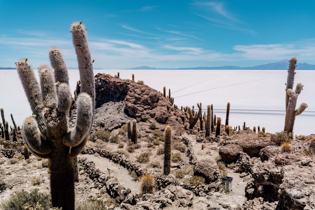 salar de uyuni incahuasi bolivien