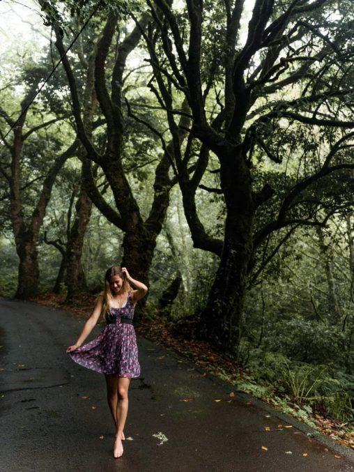 die schönste orte auf madeira reisetipps portugal
