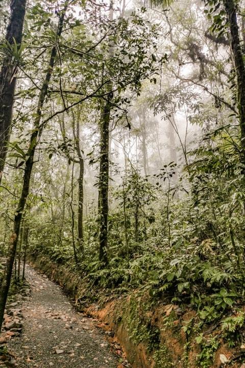 wasserfälle costa rica tenorio nationalpark wanderweg